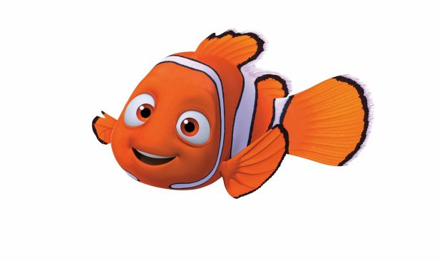 finding-nemo-nemo-is-supposed-to-be-a-girl-721779