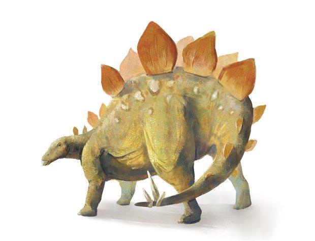 stegosaurus_stenops_by_meguskus-d8yvcqx
